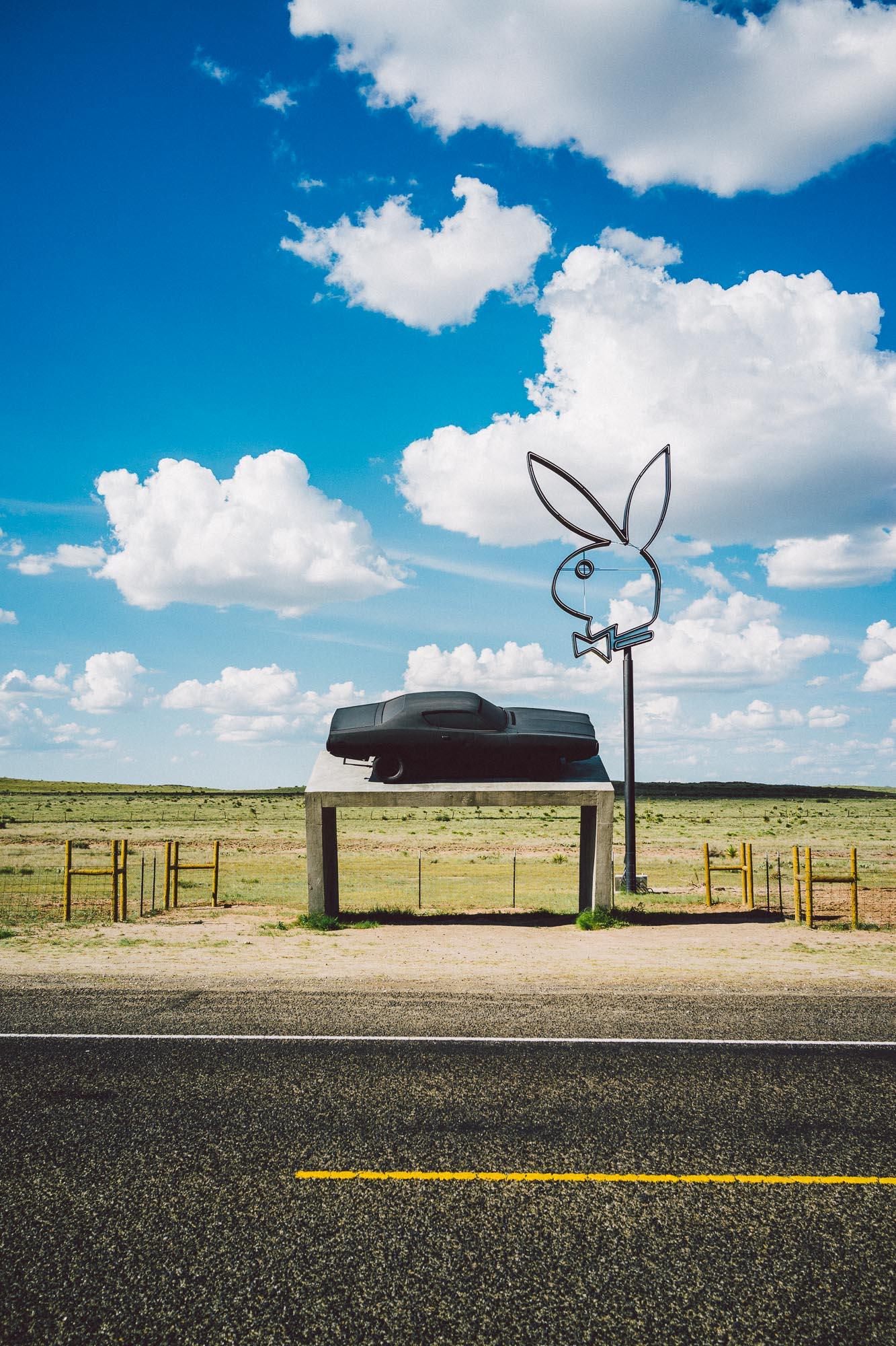 RX1 Marfa Bunny-1