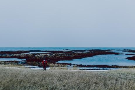 Iceland Web-039