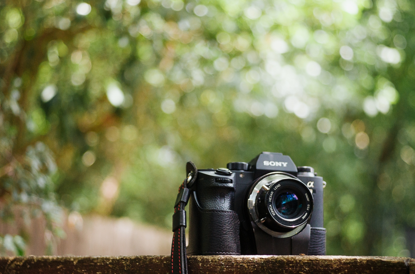 Hexar 35mm review-1