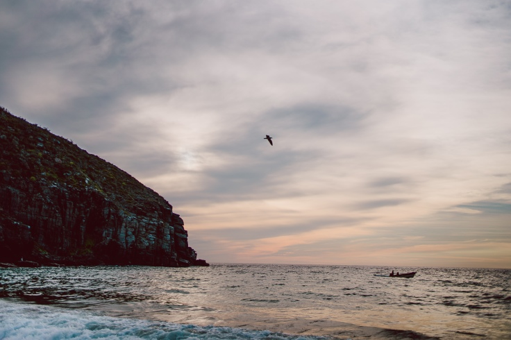 Baja Mexico 2017-0004