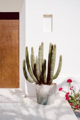 Baja Mexico 2017-0047