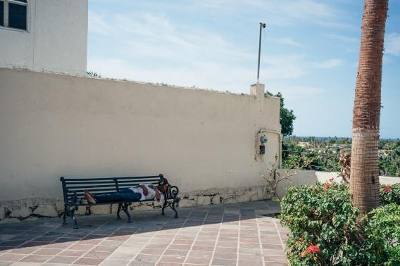 Baja Mexico 2017-0081