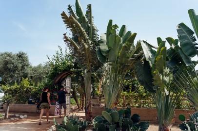 Baja Mexico 2017-0093