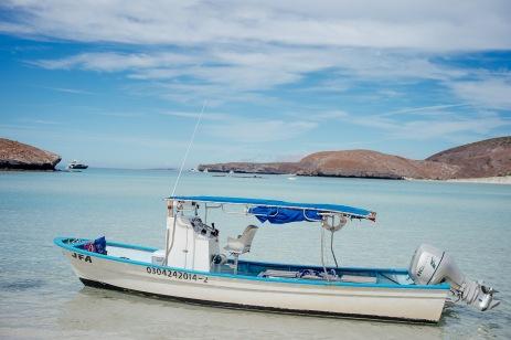 Baja Mexico 2017-0149